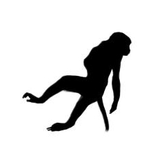 Jumping Langur